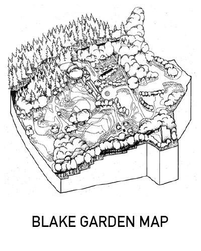 Link to site map